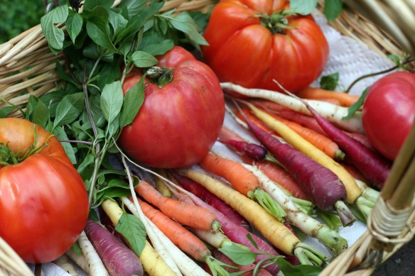 Rainbow Carrots and Heirloom Tomatoes